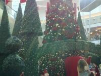 Natale17