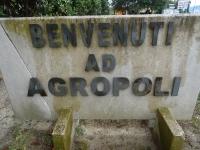 Agro15.JPG