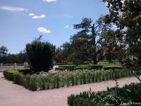 Aranjuez6