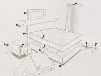 bedbugs-5.jpg