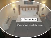 bedbugs-3.jpg