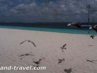 Bonaire15s