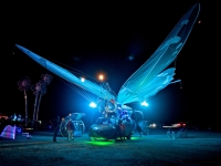burningman-12.jpg