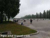 Dachau17s