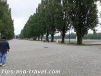 Dachau20s