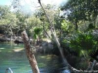 Cenote 4