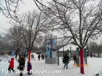 neige11s