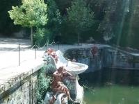 fuente11