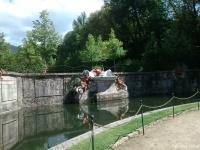 fuente13