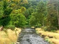 Glendalough3s