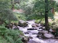 Glendalough16s