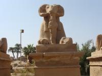 Luxor20