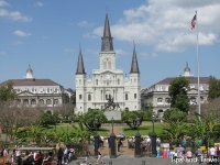 new-orleans9