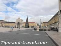 Lisbonnes
