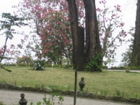 Parco11.JPG