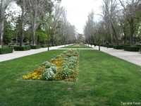 parque13