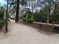 parque17