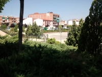 plaza8