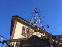 Vareses