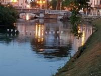 Treviso14