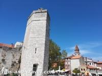 Zadar19s